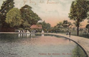 PECKMAN RYE , London Borough of Southwark, England , 00-10s ; The Pond