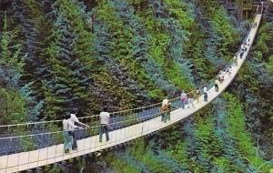The World Famous Capilano Suspension Bridge Is 230 Feet High 450 Feet Long No...