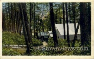 Lower Road Pine Lodge in Angola, New York