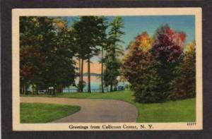 NY Greetings from CALLICOON CENTER NEW YORK PC Postcard