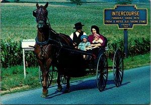 Postcard PA Pennsylvania Lancaster County Amish Horse Buggy Intercourse 1984