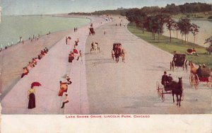 Lake Shore Drive, Lincoln Park, Chicago, IL, Early Postcard, Used in 1910