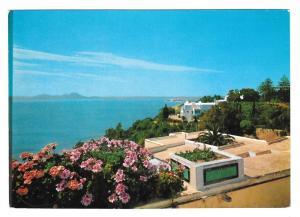 Tunisia Sidi Bou Said Panorama H Ismail Postcard