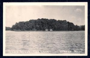 Shore Scene - Pine Lake Otsego MI RPPC Used 1932