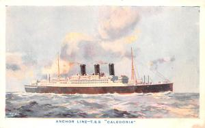 Anchor Line Ship Postcard Old Vintage Antique Post Card TSS Caledonia Unused