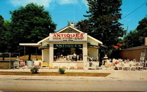 Florida Holly Hill Boyle Antiques