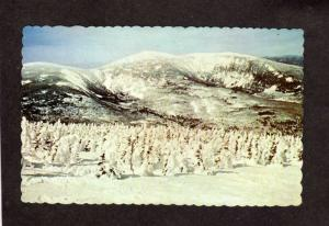 ME Winter Snow Sugarloaf Ski Skiing Kingfield Stratton Mountain Maine Postcard