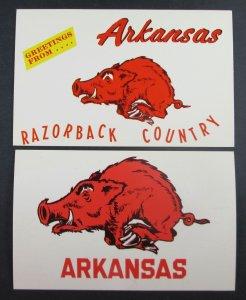 Lot of (2) Arkansas AR Razorback Country Postcards (F9)