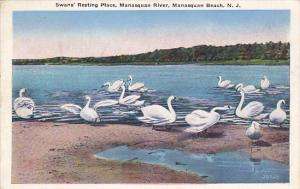 New Jersey Manasquan Beach Swans Resting Place Manasquan River 1936