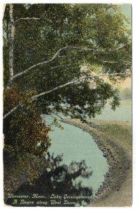 Worcester, Mass, Lake Quinsigamond, A Bayou along West Shore