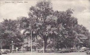 Ohio Oberlin Historic Elm Albertype