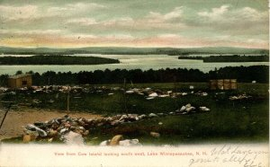 NH - Lake Winnipesaukee. View from Cow Island