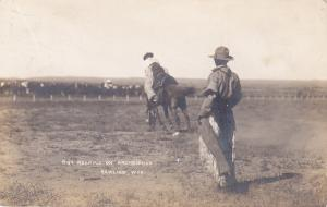 RP: Rodeo; Roy Robbins on Archbishop , RAWLINS , Wyoming , PU-1908