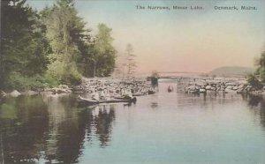Maine Denmark The Narrows Moose Lake Albertype