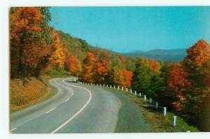 Vintage Postcard Highway thru Ozarks Fall Leaves Changing Colors  # 2596