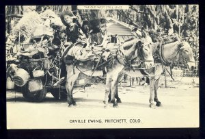 Pritchett, Colorado/CO Postcard, Orville Ewing, Burro Drawn Cart, Old West