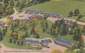 Virginia Natural Bridge Natural Bridge Motor Lodge 1955 Albertype