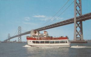 M.S. Harbor Queen, Sight Seeing Boat, SAN FRANCISCO, California, 40-60's