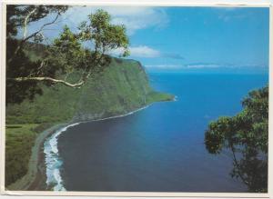 WAIPIO VALLEY, big island of Hawaii, unused Postcard