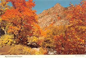 Big Cottonwood Canyon -
