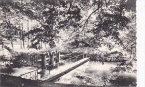 Belgium Lac de Virelles Las vannes du Deversoir