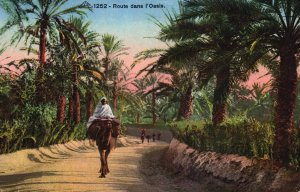 Route dans L'Oasis Camel