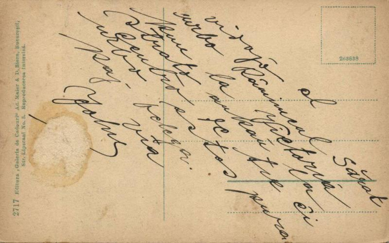 romania, RÂMNICU SĂRAT, Strada Victoriei (1910s) Postcard