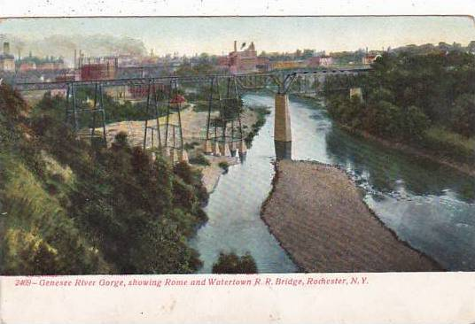 New York Rochester Genesee River Gorge Showing Rome And