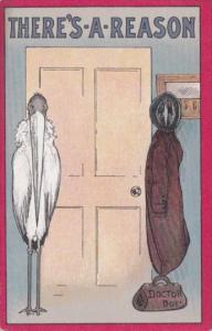 Birth Stork At Door There's A Reason