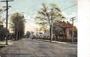 Binghamton New York~Riverside Drive Looking East~Beautiful Houses~1909 Postcard