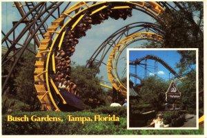FL - Tampa. Busch Gardens. The Python Thrill Ride
