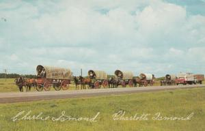 SHAUNAVON , Saskatchewan , Canada , 50-60s ; Canadian Wagon Train