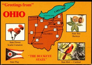 Ohio Greetings With Map State Flower Tree Bird and Flag