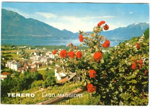 Switzerland, TENERO, Lago Maggiore, stamped, unused Postcard