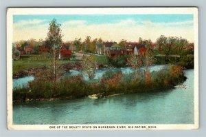 Big Rapids MI-Michigan, Beauty Spot On Muskegon River, Vintage Postcard