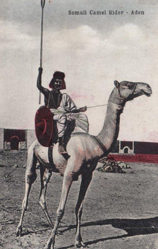 ADEN , Yemen , 00-10s ; Somali Camel Rider