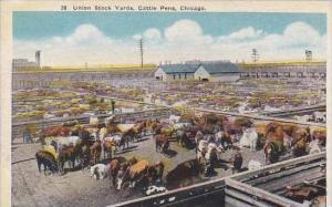 Illinois Chicago Union Stock Yards Cattle Pens