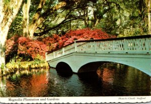 South Carolina Charleston Magnolia Plantation and Gardens Rustic Bridge 1982