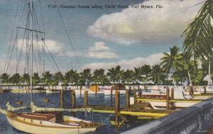Florida Fort Myers Coconut Palms Along Yacht Basin Curteich