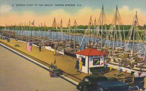 Sponge Fleet At The Docks Tarpon Springs Florida 1945