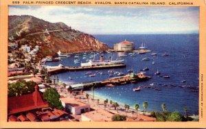 California Santa Catalina Island Avalon Palm Fringed Crescent Beach