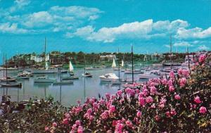Wychmere Harbor On Cape Cod Massachusetts 1964