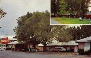 Bishop California The Elms Motel Vintage Postcard JB626345