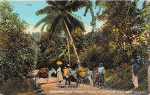 Jamaica, scene on Boo Walk near Kent Village