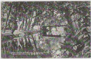 Cherry Creek Glenwood House Delaware Water Gap PA -vintage-