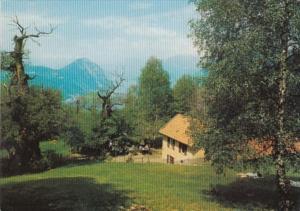 Switzerland Lago di Lugano Grotto Alpe Brusino