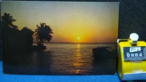 STD Vintage Florida Sunset Unposted