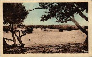 CPA Ermenonville- La mer de sable FRANCE (1020493)