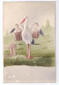 Stork with Twins Congratulations Airbrushed Embossed 1907