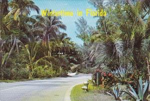 Wintertime In West Palm Beach Florida